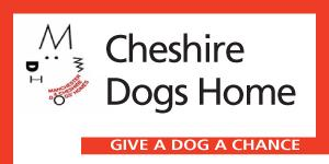 cheshire-dogs-home
