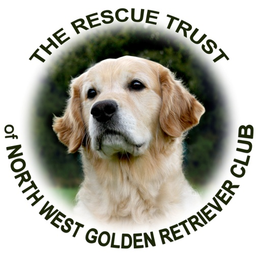 Golden retriever rescue centre chorley